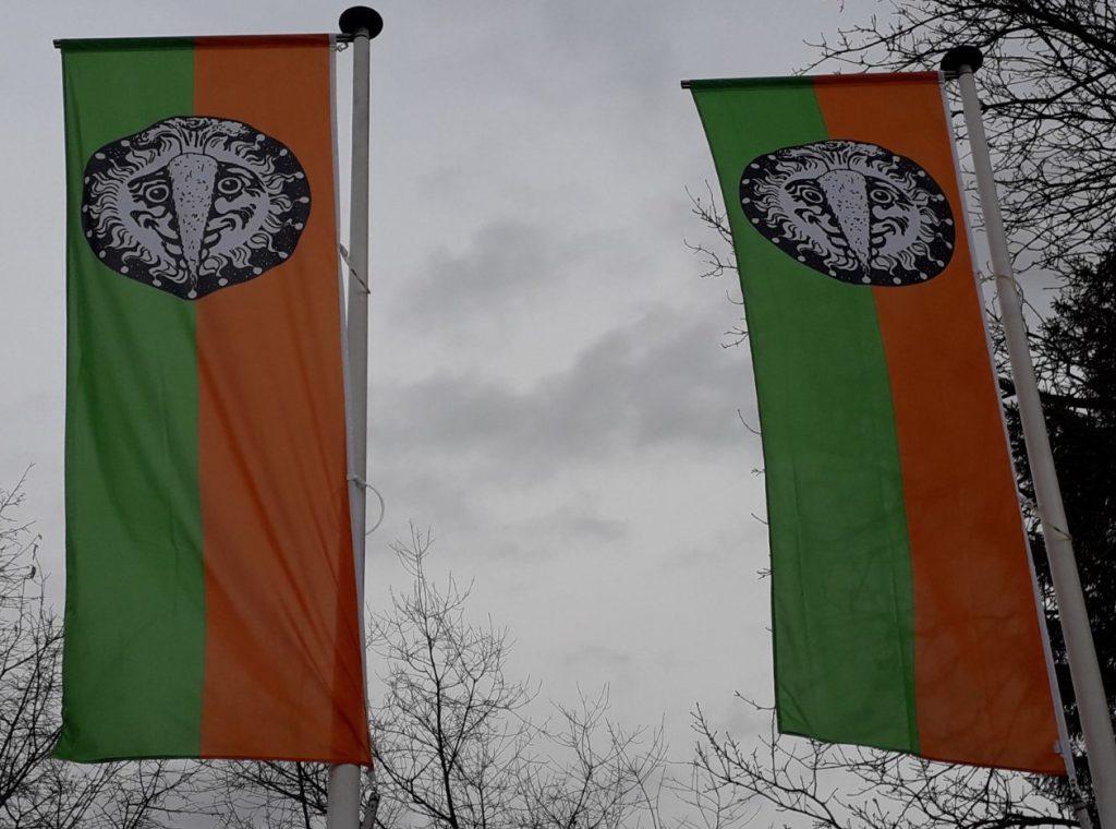 Carnavalsvlaggen